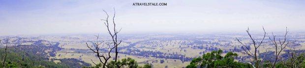 panorama bush walk