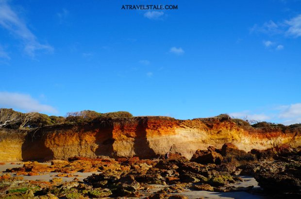 anglesea ocean red rocks