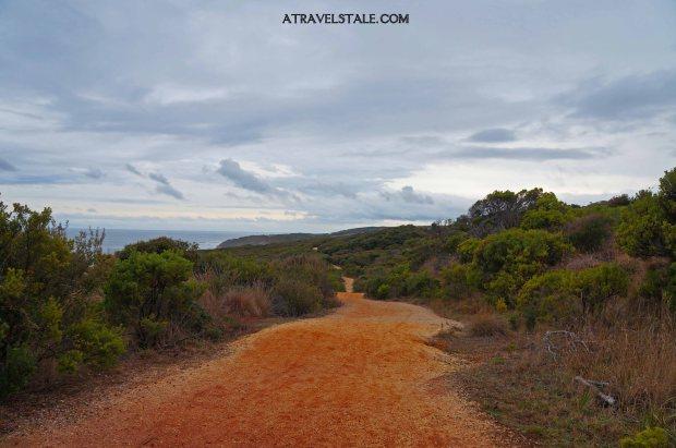 torquay trail